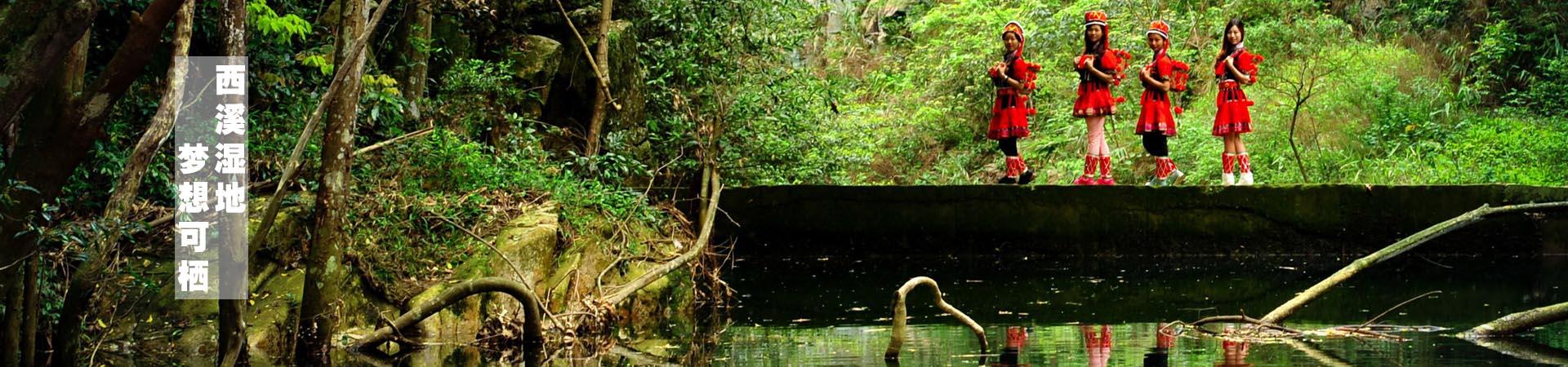 杭州西溪湿地不一样的风景
