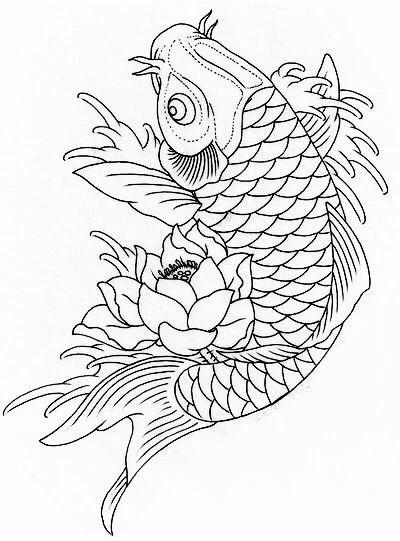 9幅白描画《鱼》:勾勒活灵活线