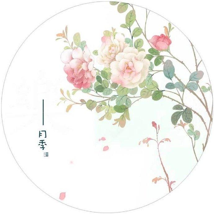 清新植物花卉插画,可作头像的