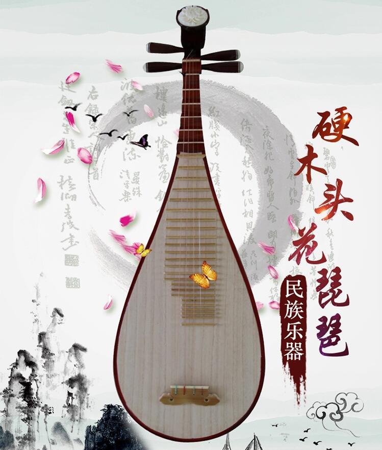 民族乐器琵琶琴