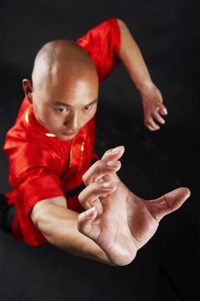 中华武术与僧侣图片(二)