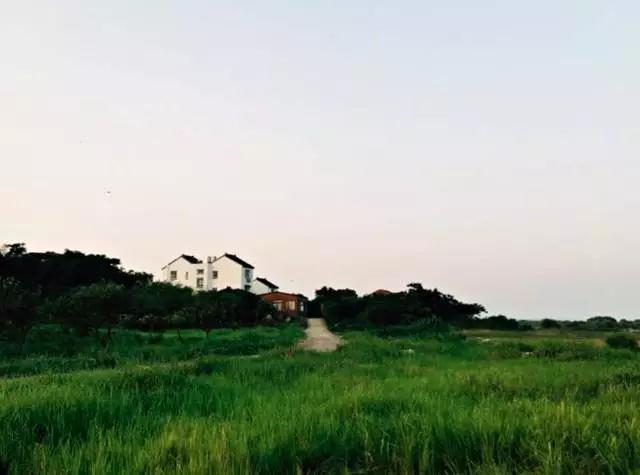 苏州太湖秘境:三山岛·岛隐