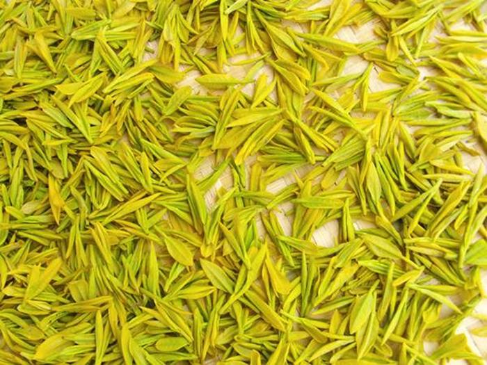 中国十大名茶之湖南君山银针