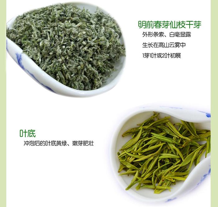 中国十大名茶之都匀毛尖