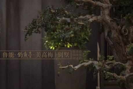 鲁能·钓鱼台美高梅别墅园林景