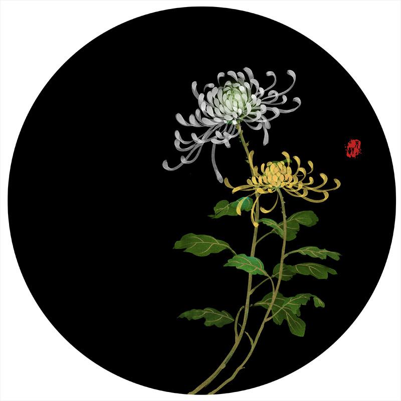 唯美花卉插画图片