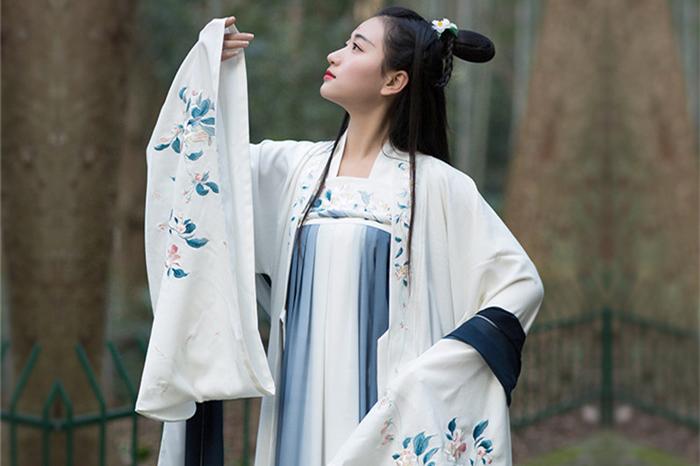 中国风传统汉服女装大袖衫绣花上