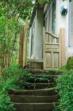 台湾最文艺的山间小屋,数树民宿
