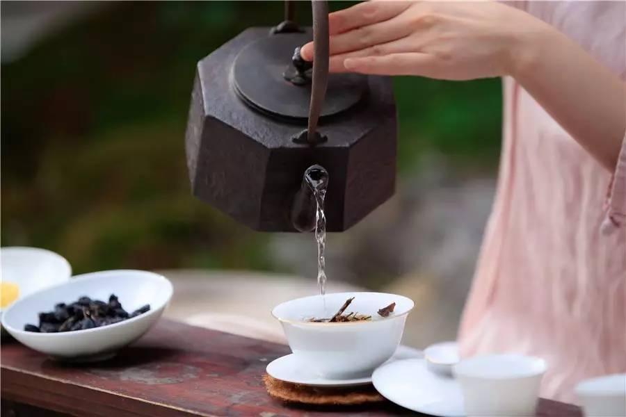 觀芷隐轩,以茶会友的民宿