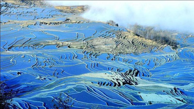 蓝色的元阳梯田风光摄影