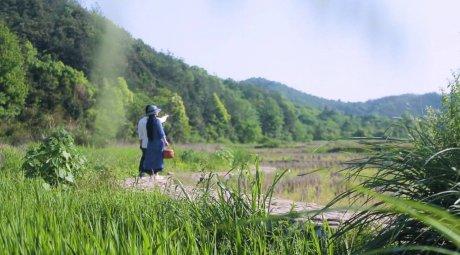 新安江畔谷掌民宿,庄园里享受