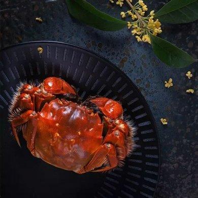 特色美食:秋意浓·蟹消愁
