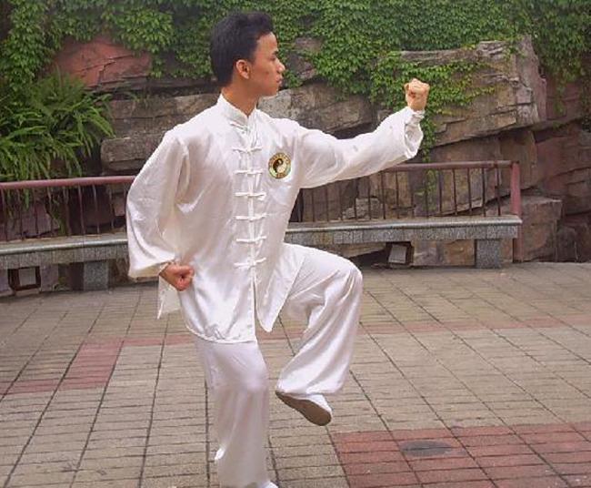 中华武术:陈氏太极拳