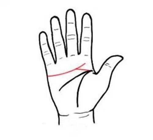 四种不同手掌外形,看出你的不同性格