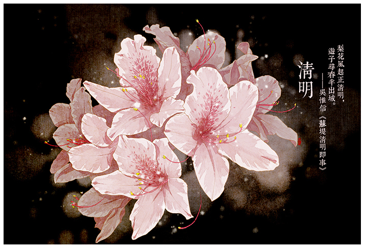 唯美的24节气花卉插画,品味古老的诗之清韵