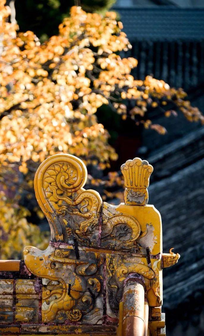 中国最美的配色:紫禁城古建筑的色彩美!