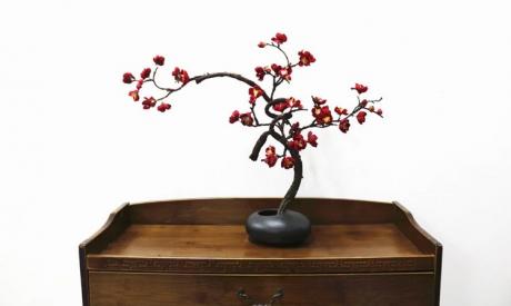 禅意艺术插花:梅花中式