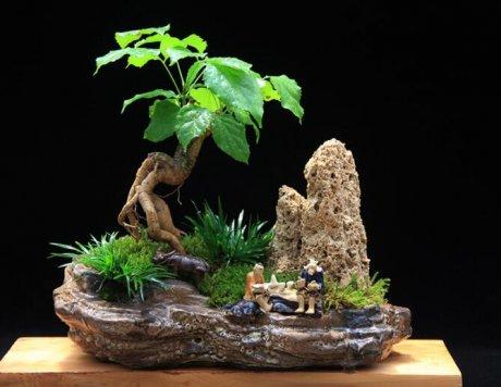 高档水石艺术组合,绿植微景观