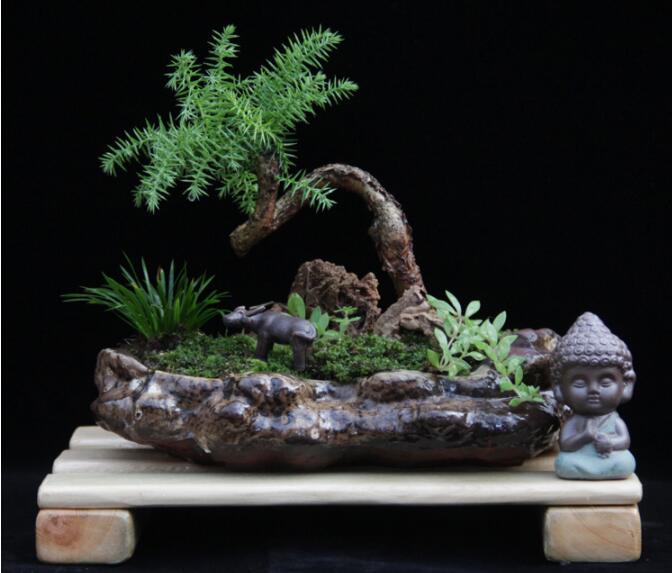 高档水石艺术组合,绿植微景观旱盆盆景
