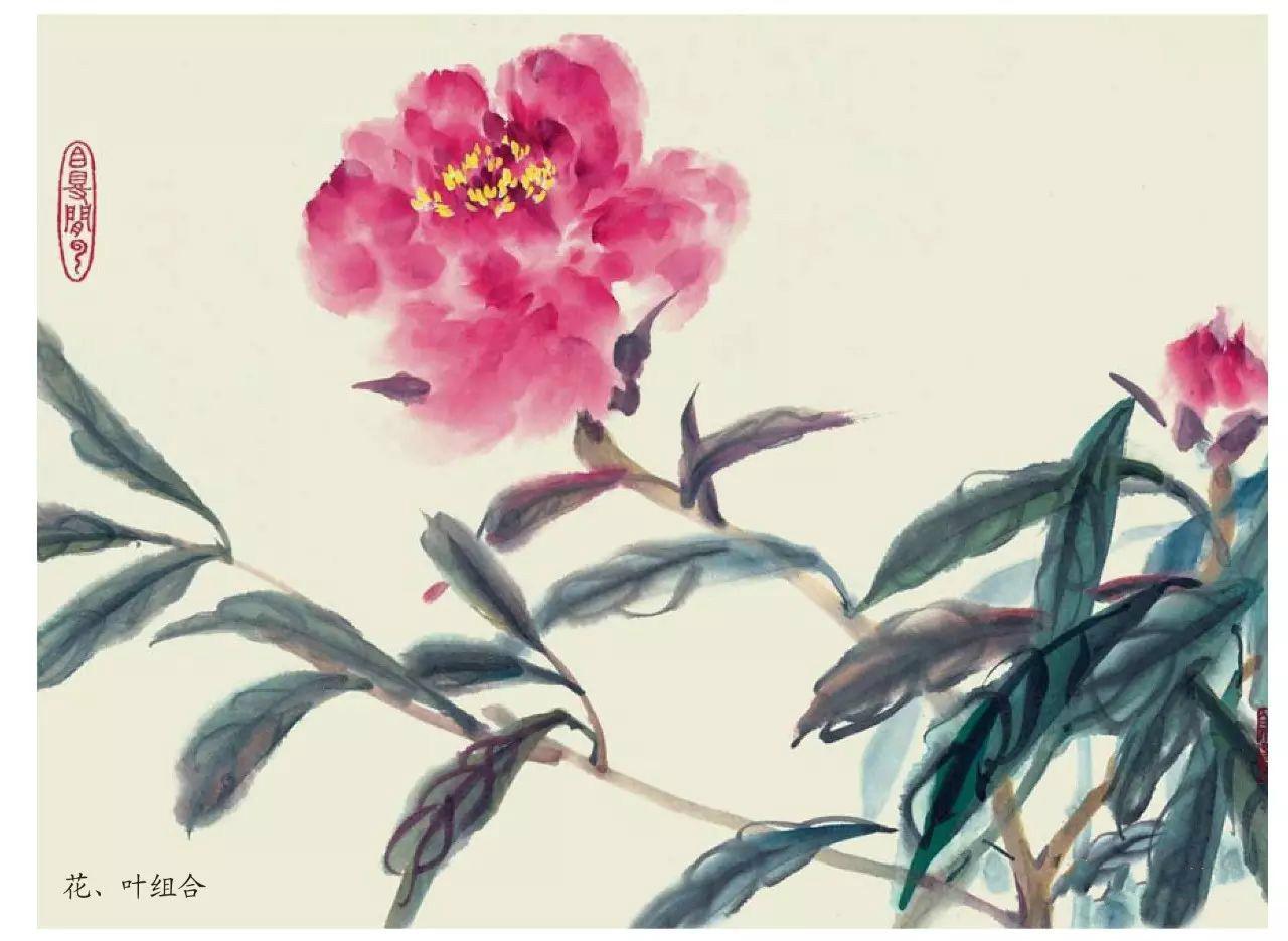 国画技法:超详细的国画各种花卉画法大全!