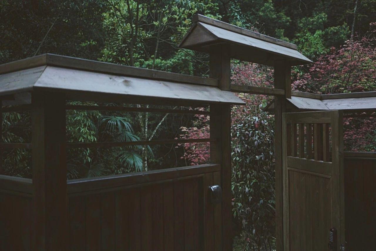 成都·坐忘森林,一宿一悟在火锅之城住森林里