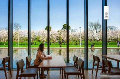 中国5个最美图书馆:阅读心灵的