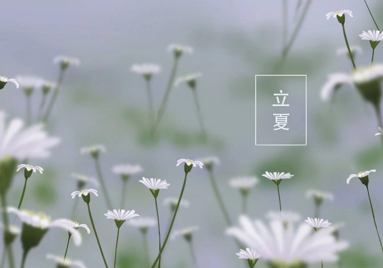 唯美古风句子:最美的十首夏日诗词!