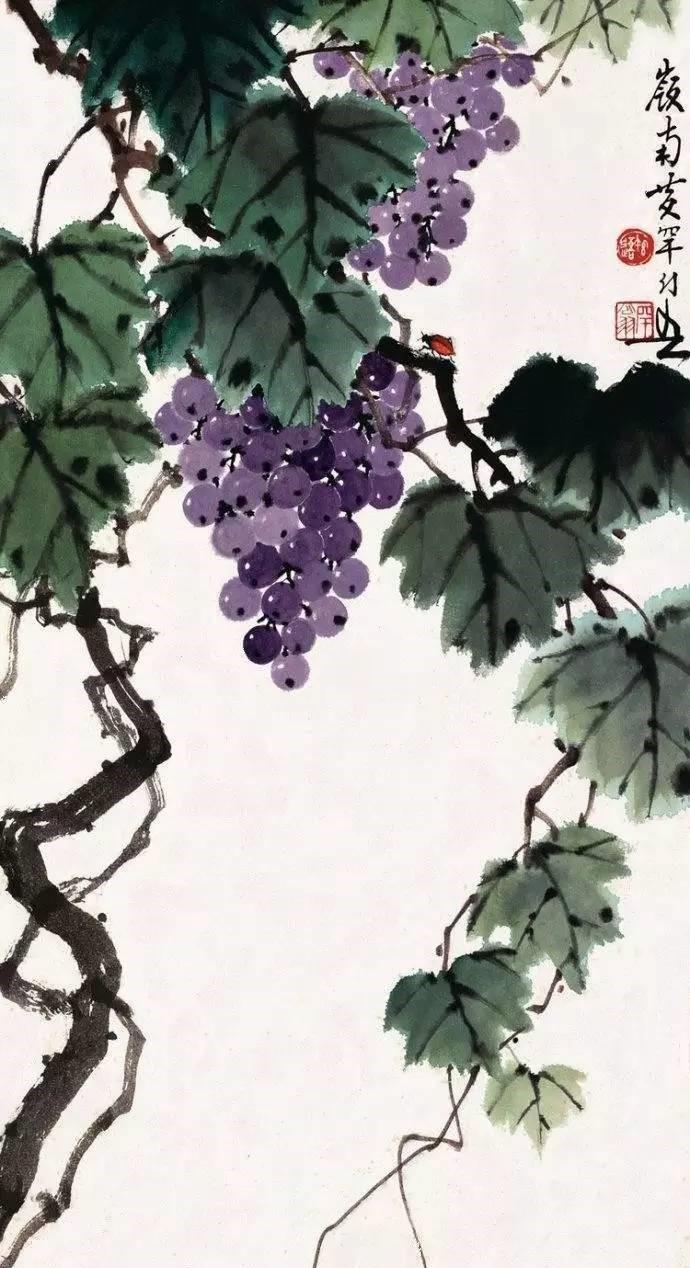 美人如葡萄,秀美如国画!