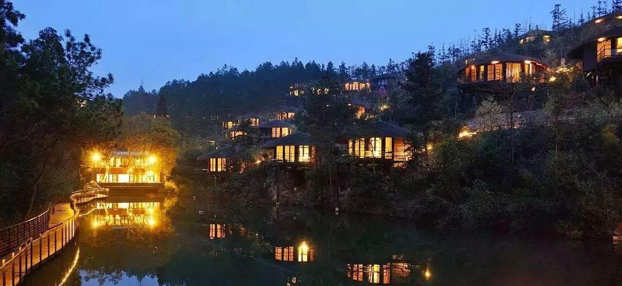 """树梢上的别墅建筑:6个比较火的""""巢居""""案例"""