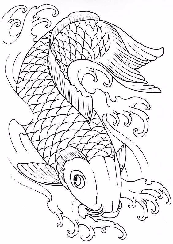 9幅白描画《鱼》:勾勒活灵活线的鱼