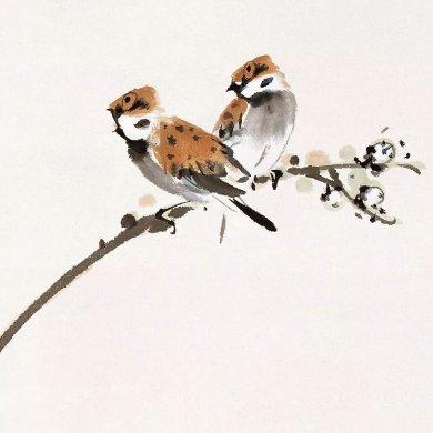 100幅禽鸟百图,国画鸟类