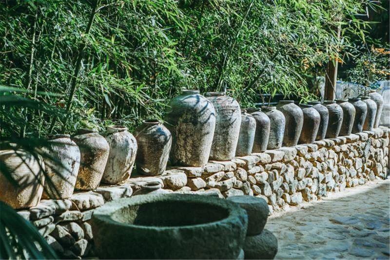 莫干山·柒竹悠南山,安静的世外桃源