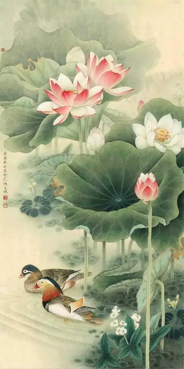 鸳鸯戏水图集(18张),好漂亮的国画图片