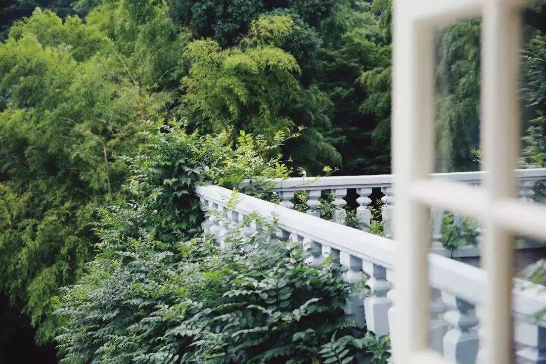 6家莫干山的新民宿,美出新境界