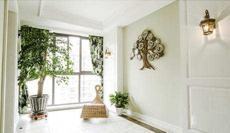 盆栽植物与家居风水有何讲究
